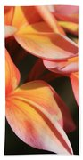 Pink Tropical Plumeria Makawao Maui Hawaii Bath Towel