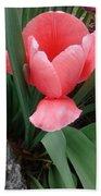 Pink Tulip Bath Towel