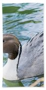 Pintail Portrait Bath Towel