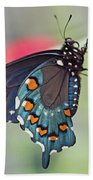 Pipevine Swallowtail Butterfly Bath Towel