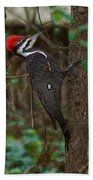 Plastic Wrapped Pileated Woodpecker Bath Towel