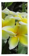 Plumeria In Yellow  5 Bath Towel