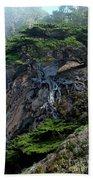 Point Lobos Veteran Cypress Tree Bath Towel