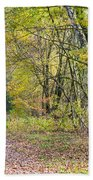 Polish Forest 1 Bath Towel