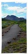 Polychrome Pass Trail, Denali Bath Towel