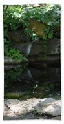 Pond At Twu 2 Bath Towel