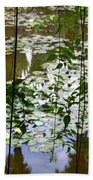 Pond In Marrakesh Bath Towel