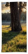 Ponderosa Pine Meadow Bath Towel