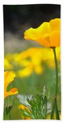 Poppy Flower Meadow 11 Poppies Art Prints Canvas Framed Bath Towel