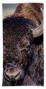 Portrait Of A Buffalo Bath Towel