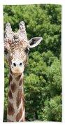 Portrait Of A Giraffe Bath Towel