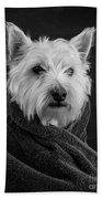 Portrait Of A Westie Dog 8x10 Ratio Hand Towel
