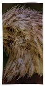 Portrait Of An Eagle Bath Towel