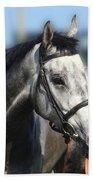 Portrait Of The Grey Race Horse Bath Towel