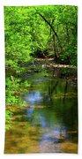 Potamac River In Maryland Bath Towel