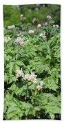 Potato Flower Agriculture Spring Scene Bath Towel