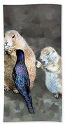 Prairie Dogs And A Bird Eating Bath Towel