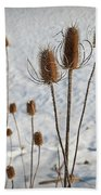Prairie Seedheads Bath Towel