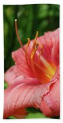 Pretty Flowering Pink Lily In A Garden Bath Towel