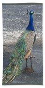 Pretty Peacock Bath Towel