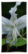 Pretty White Stargazer Lily Flower Blossom Bath Towel