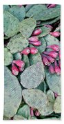 Prickly Pear Cactus Fruits Hand Towel