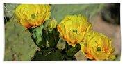 Prickly Pear Flowers H42 Bath Towel