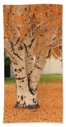Prosser - Autumn Birch Trees Bath Towel