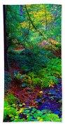 Psychedelicosmic Creek On Mt Tamalpais Bath Towel