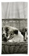 Puppies Of The Past Bath Towel