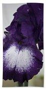 Purple And White Iris Bloom Bath Towel
