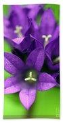 Purple Blooms Hand Towel