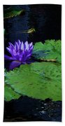 Purple Blue  Lily Hand Towel