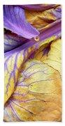Purple Cabbage Bath Towel