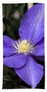 Purple Clematis Bath Towel