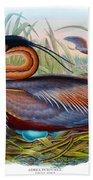 Purple Heron Antique Bird Print John Gould The Birds Of Great Britain Bath Towel