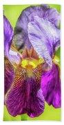 Purple Iris 2018 Bath Towel