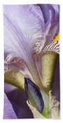 Purple Iris Beauty Bath Towel