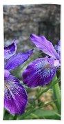 Purple Irises With Gray Rock Bath Towel