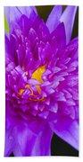 Purple Lotus Bath Towel