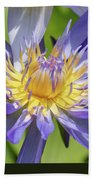 Tropical Purple Water Lily Bath Towel