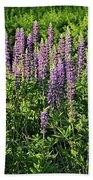 Purple Lupines In Summer Bath Towel