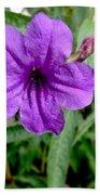 Purple Mexican Petunia Bath Towel