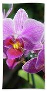 Purple Orchids 2 Bath Towel