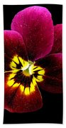 Purple Pansy On Black Bath Towel