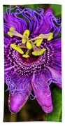 Purple Passion Flower Bath Towel