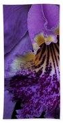 Purple Passion Bath Towel