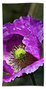 Purple Poppy Bath Towel