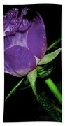 Purple Rose Bath Towel