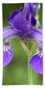 Purple Siberian Iris Bath Towel